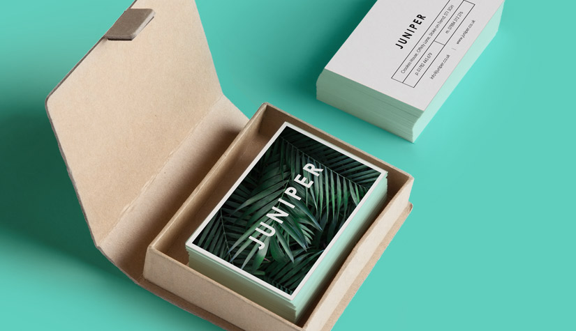 business-cards-in-a-box